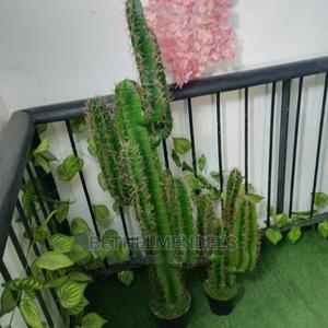 Artificial Potted Cactus Plant Available for Pick Up   Garden for sale in Lagos State, Ikeja