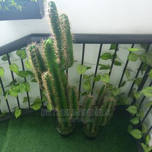 Artificial Best Cactus Potted Plant for Sale   Garden for sale in Lagos State, Ikeja