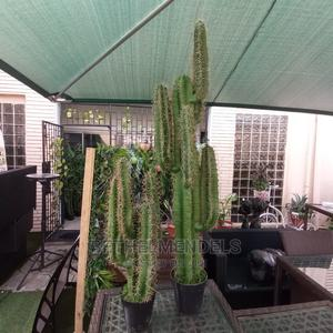 Affordable and Amazing Artificial Cactus Plant for Decor | Garden for sale in Lagos State, Ikeja
