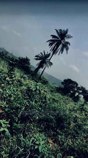 4plots of Land at Badeku,Ona Ara LG Ife Ibadan Express | Land & Plots For Sale for sale in Oyo State, Ibadan