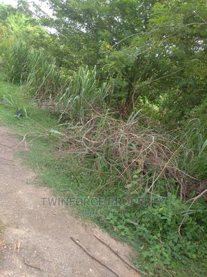 A Plot of Land   Land & Plots For Sale for sale in Ibadan, Odo Ona