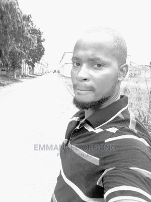 Truck Driver/ Driver | Driver CVs for sale in Lagos State, Amuwo-Odofin