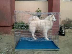 Eskimo/Lhasa Indoor Cage for Sale | Pet's Accessories for sale in Ogun State, Abeokuta South