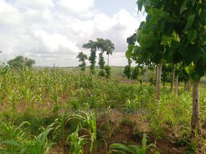 6 Plots of Land for Sale   Land & Plots For Sale for sale in Ogun State, Ilaro