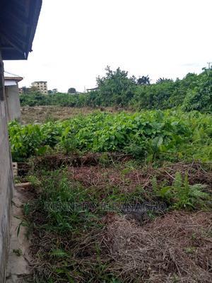 Half Plot of Land for Sale | Land & Plots For Sale for sale in Ojo, Okokomaiko