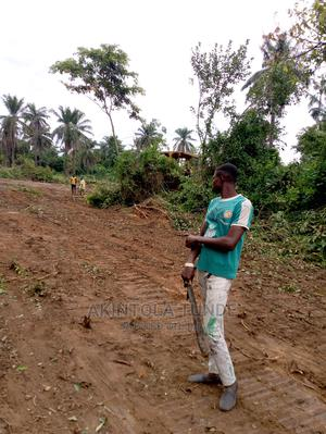 More Than 500 Acres of Land at Ariori Village Near Ilaji Farm   Land & Plots For Sale for sale in Oyo State, Ona-Ara