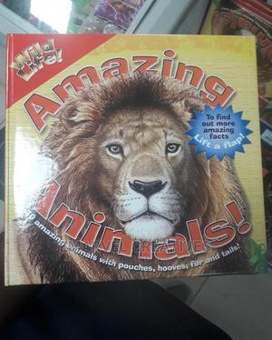 Amazing Animals: 20 Amazing Animals With Hooves   Books & Games for sale in Lagos State, Surulere