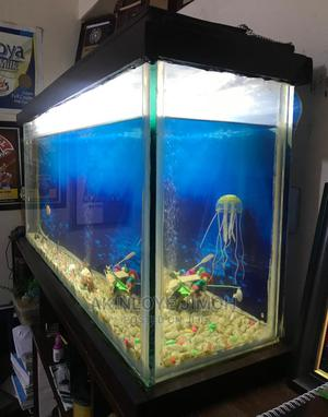 42 by 18 by 10 Inches Giant Aquarium (12mm Glass) | Fish for sale in Lagos State, Yaba
