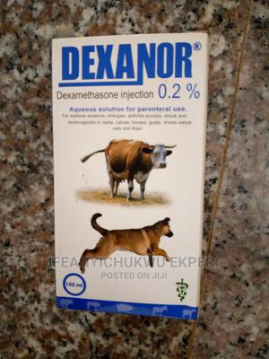 Dexanor 0.2% Antibacterial Injection(100ml) | Pet's Accessories for sale in Abuja (FCT) State, Jabi