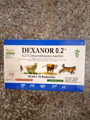 Dexanor 0.2%Injection for Antibacterial (10ml) | Pet's Accessories for sale in Abuja (FCT) State, Jabi