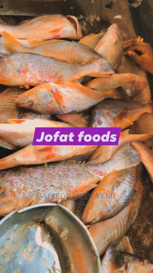 Fresh Croaker Fish   Livestock & Poultry for sale in Lagos State, Yaba