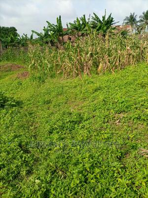 Half Plot for Sale on a Corner Piece   Land & Plots For Sale for sale in Ogun State, Ado-Odo/Ota