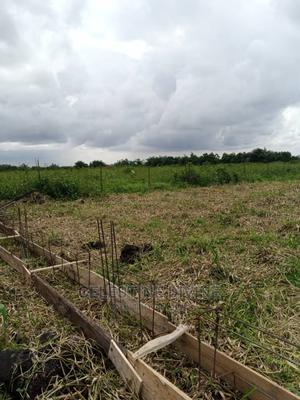 Land for Sale | Land & Plots For Sale for sale in Amuwo-Odofin, Abule Ado