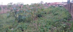 700sqm of Land at Elebu, Off Akala Expressway, Ibadan, Oyo S   Land & Plots For Sale for sale in Ibadan, Akala Express