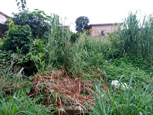 One Acre Of Farmland For Rent At Erunmu Ibadan   Land & Plots for Rent for sale in Oyo State, Egbeda