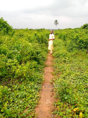 Acres Of Land Available For Sale | Land & Plots For Sale for sale in Lagos State, Epe