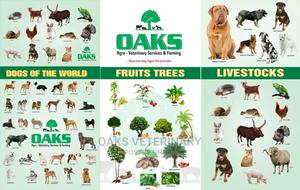 Oaks Agro Veterinary Service and Farming | Pet Services for sale in Lagos State, Apapa