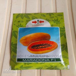 Maradona Dwarf Pawpaw Seeds F1 | Feeds, Supplements & Seeds for sale in Oyo State, Ibadan