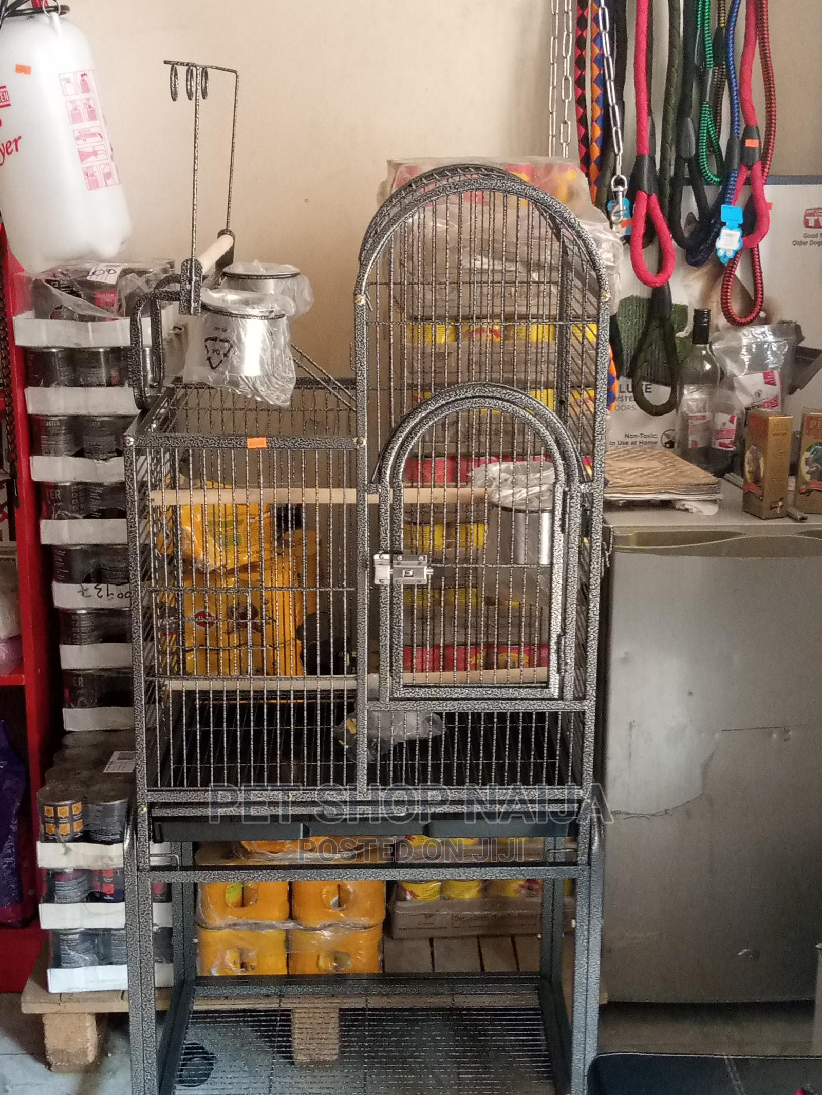 Exotic Parrot Cage for Sale