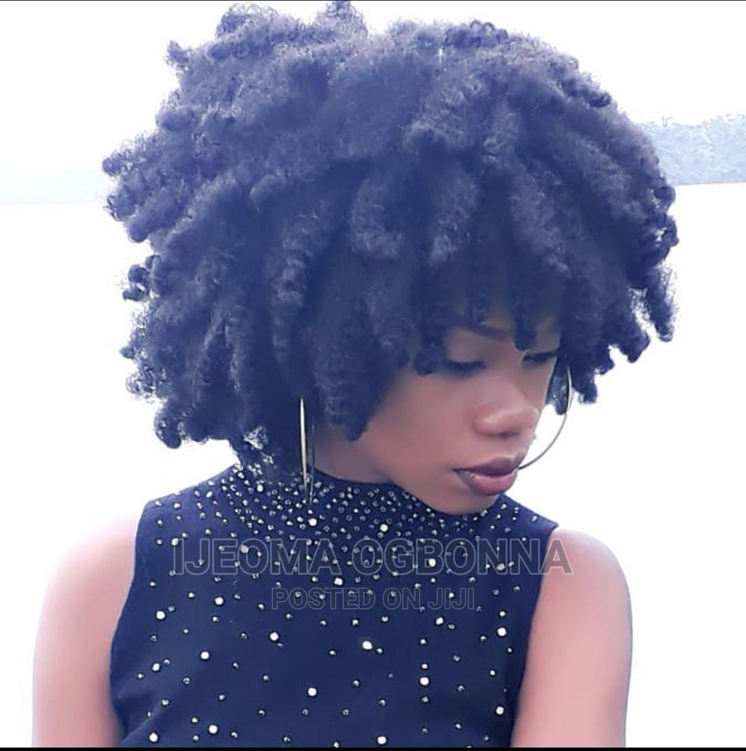 Kinky Bulk Afro Wig