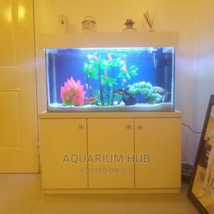 Standing Aquarium   Fish for sale in Lagos State, Ajah