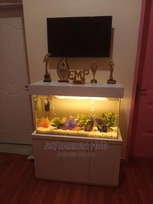 Beautiful Standing Aquarium   Fish for sale in Lagos State, Lekki