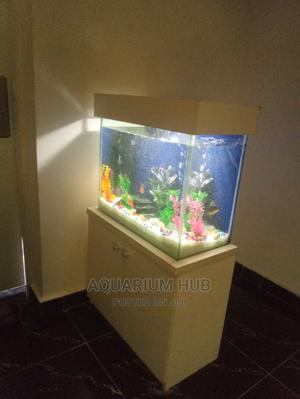 Pretty 2ft Standing Aquarium   Fish for sale in Lagos State, Lekki