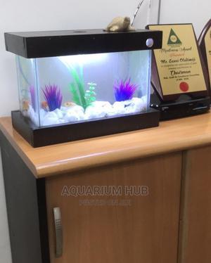 Nano Aquarium   Fish for sale in Lagos State, Ikoyi