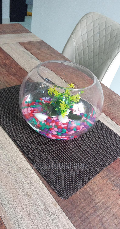 Fish Bowl Aquarium | Fish for sale in Ikoyi, Lagos State, Nigeria
