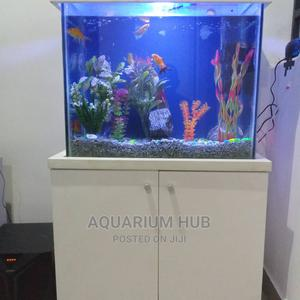 2 Ft Standing Aquarium   Fish for sale in Lagos State, Ogba
