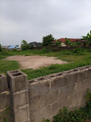 Standard Plot of Land for Sale | Land & Plots For Sale for sale in Ibadan, Akala Express