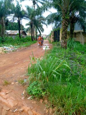 Plots of Land for Sale   Land & Plots For Sale for sale in Enugu State, Enugu