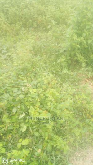 One Plot of Land   Land & Plots For Sale for sale in Ogun State, Ewekoro
