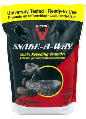 Snake-A-Way | Reptiles for sale in Lagos State, Ikorodu