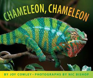 Scholastic: Chameleon | Books & Games for sale in Lagos State, Surulere