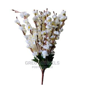 Enticing Cherry Blossom Flowers for Sale   Garden for sale in Lagos State, Ikeja