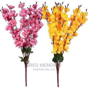 Colourful Cherry Blossom Flowerrs   Garden for sale in Lagos State, Ikeja