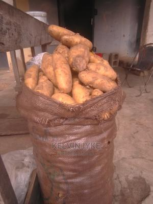 Irish Potato | Meals & Drinks for sale in Plateau State, Jos