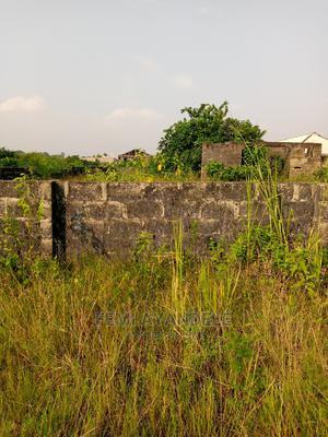 Half Plot of Land for Sale at Oreta Igbogbo   Land & Plots For Sale for sale in Lagos State, Ikorodu