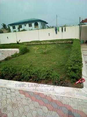 Garden Construction, Maintenance and Fumigation Service   Landscaping & Gardening Services for sale in Lagos State, Ojo