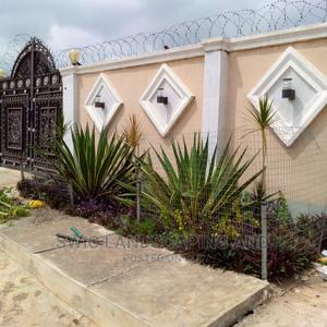 Garden Construction, Maintenance, Fumigation Service   Landscaping & Gardening Services for sale in Lagos State, Surulere
