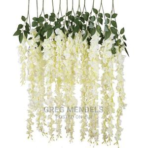 Admirable Wisteria Flowers   Garden for sale in Lagos State, Ikeja