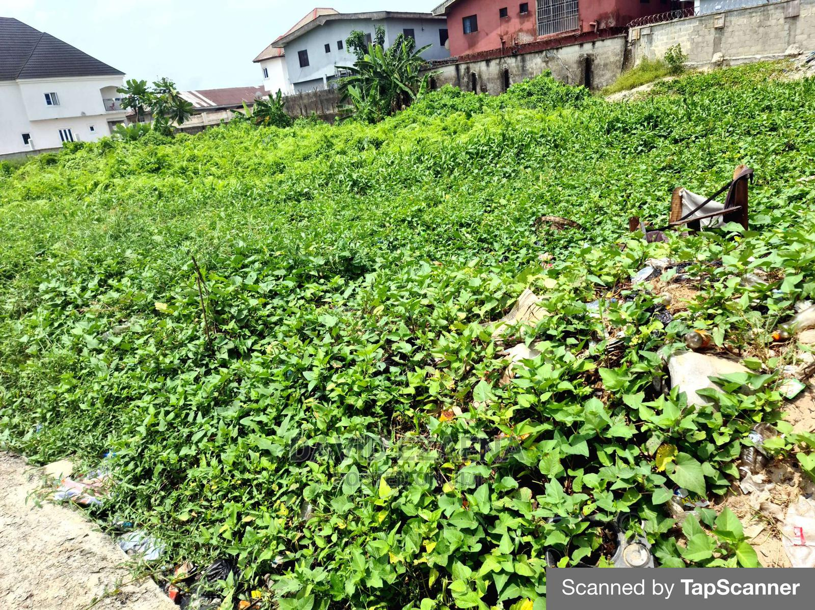 Archive: The Cheapest Plots of Land in Lekki.