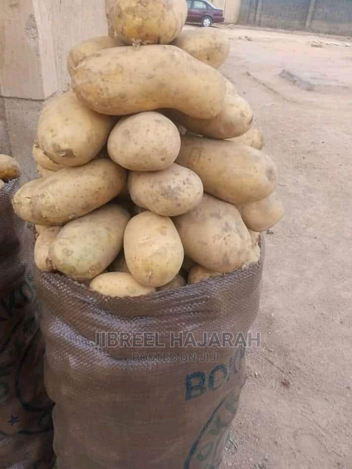 Irish Potatoes   Meals & Drinks for sale in Gwagwalada, Abuja (FCT) State, Nigeria