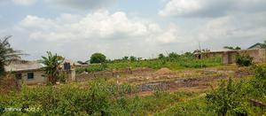 Receipt, Survey Plan   Land & Plots For Sale for sale in Ogun State, Ifo