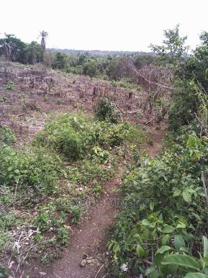 Dry Land For Sale With Free Hold, Already Searched   Land & Plots For Sale for sale in Epe, Epe