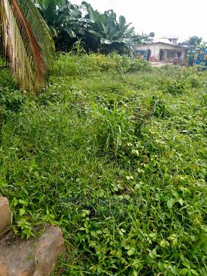 Half Plot of Land   Land & Plots For Sale for sale in Akwa Ibom State, Uyo