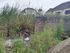 Land Measuring 1200m2 | Land & Plots For Sale for sale in Amuwo-Odofin, Festac