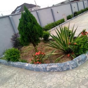 Garden Design, Construction And Maintenance, Fumigation   Landscaping & Gardening Services for sale in Lagos State, Ajah