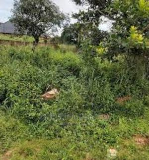 50ft by 100ft for Sale at Oku Community Siluko Road   Land & Plots For Sale for sale in Edo State, Benin City